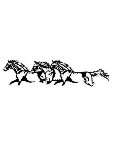 Cowboys-and-Horses-5