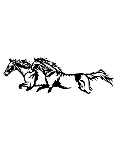 Cowboys-and-Horses-6