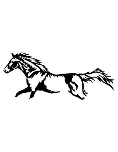 Cowboys-and-Horses-7
