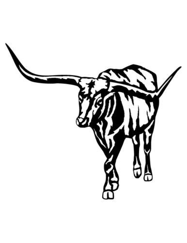 Cowboys-and-Horses-8