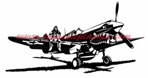 P-40-WarHawk-Large36BS (1)
