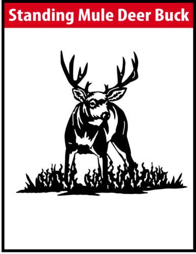 Standing Mule Deer Buck JPG Image File