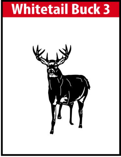 Whitetail Buck 3 JPG Image File