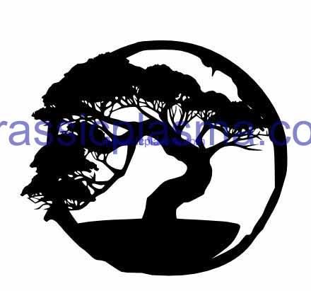 bonsai tree 12 imageWM (1)