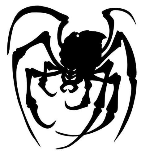 creepy spider image