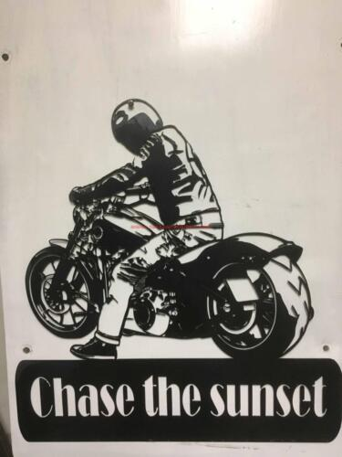 harley Biker lookback chase the sunAR