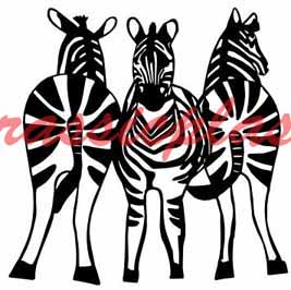 zebras 3 in a groupeBY